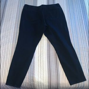 Two pair of Ann Taylor's modern cut size 16 jeans!